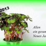 Allen-ein-gesundes-Neues-Jahr-2013-a29865098